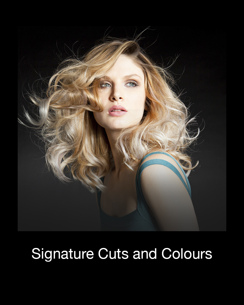 signature cuts and colours